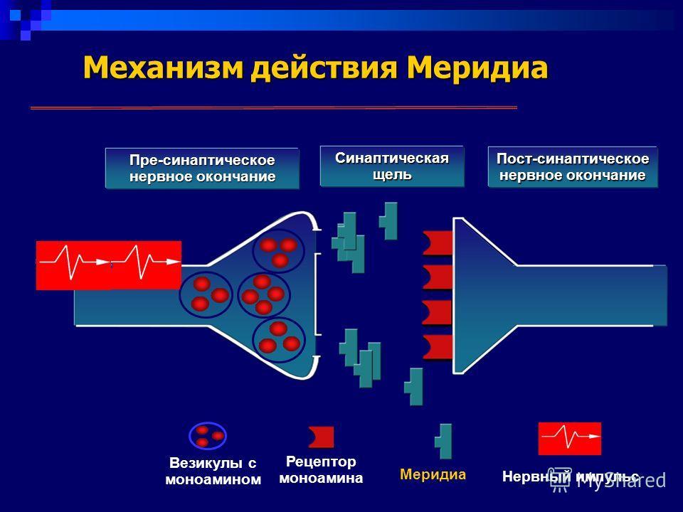 Механизм действия Меридиа Пре-синаптическое нервное окончание Синаптическая щель Пост-синаптическое нервное окончание Везикулы с моноамином Рецептор моноамина Меридиа Нервный импульс