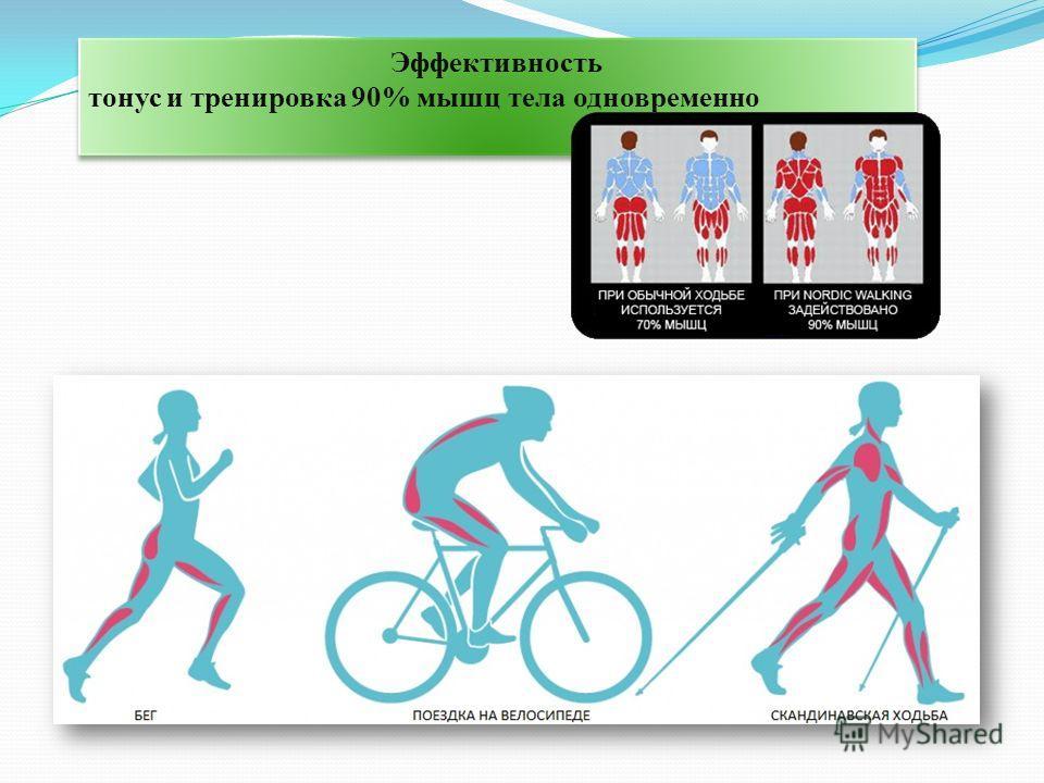 Эффективность тонус и тренировка 90% мышц тела одновременно Эффективность тонус и тренировка 90% мышц тела одновременно