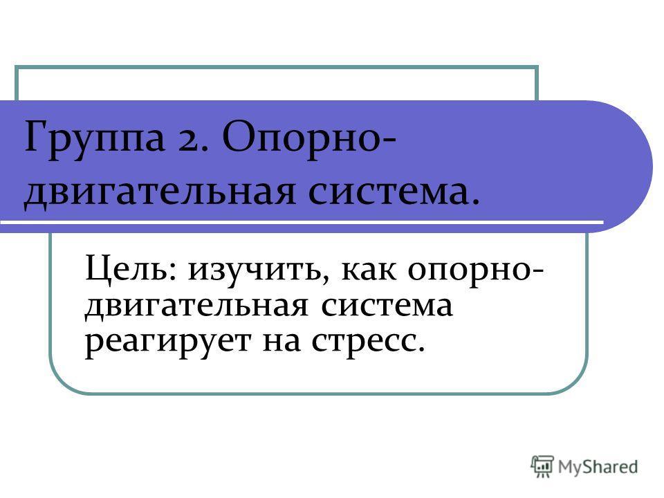 Группа 2. Опорно- двигательная система. Цель: изучить, как опорно- двигательная система реагирует на стресс.