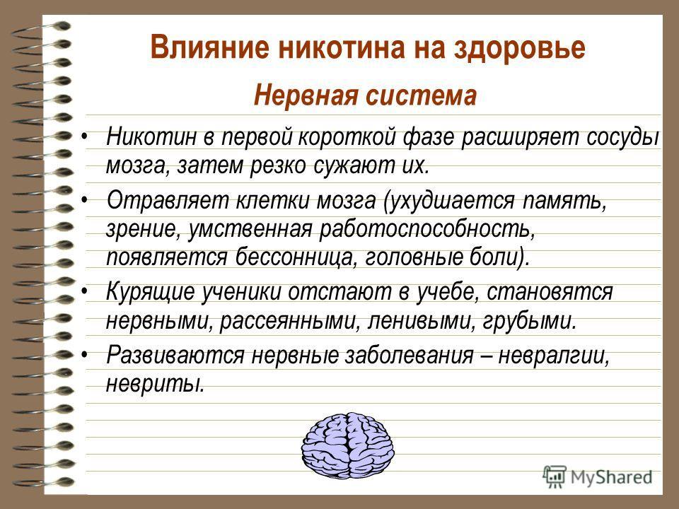 Нервная система Никотин в первой короткой фазе расширяет сосуды мозга, затем резко сужают их. Отравляет клетки мозга (ухудшается память, зрение, умственная работоспособность, появляется бессонница, головные боли). Курящие ученики отстают в учебе, ста