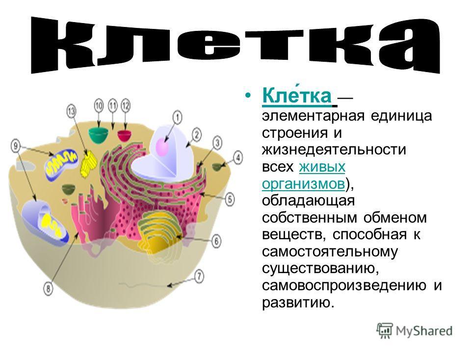 Кле́тка элементарная единица строения и жизнедеятельности всех живых организмов), обладающая собственным обменом веществ, способная к самостоятельному существованию, самовоспроизведению и развитию.живых организмов