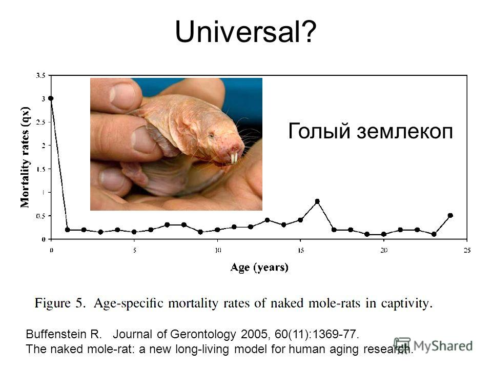 Universal? Buffenstein R. Journal of Gerontology 2005, 60(11):1369-77. The naked mole-rat: a new long-living model for human aging research. Голый землекоп