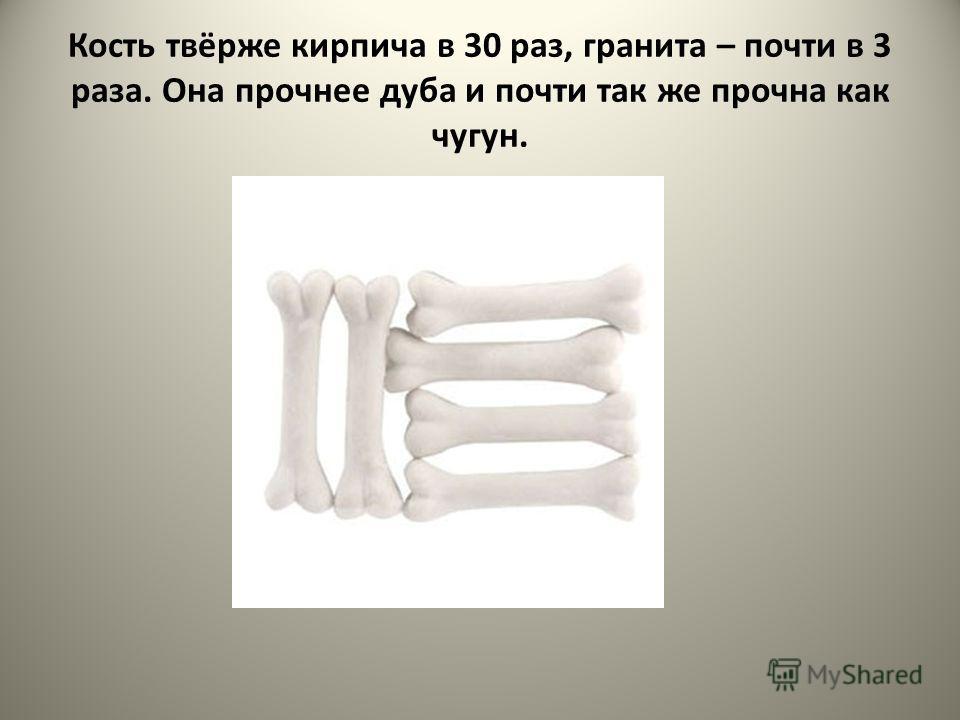 Кость твёрже кирпича в 30 раз, гранита – почти в 3 раза. Она прочнее дуба и почти так же прочна как чугун.