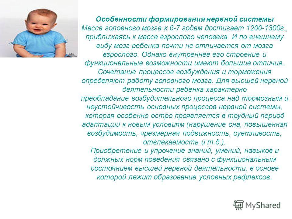 Особенности формирования нервной системы Масса головного мозга к 6-7 годам достигает 1200-1300 г., приближаясь к массе взрослого человека. И по внешнему виду мозг ребенка почти не отличается от мозга взрослого. Однако внутреннее его строение и функци