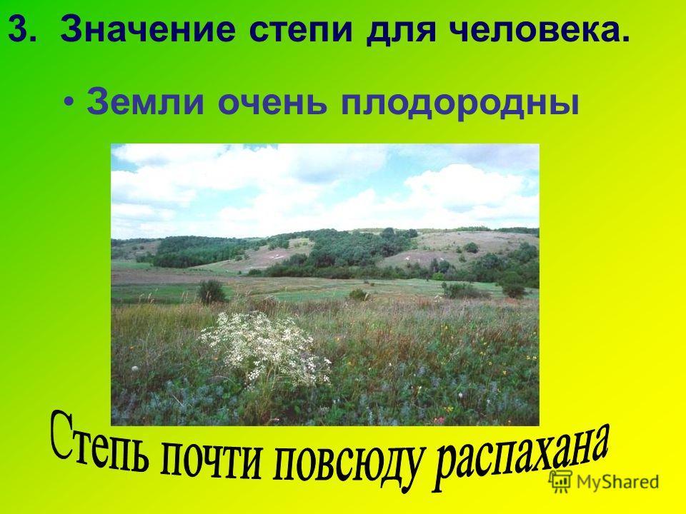 Земли очень плодородны 3. Значение степи для человека.