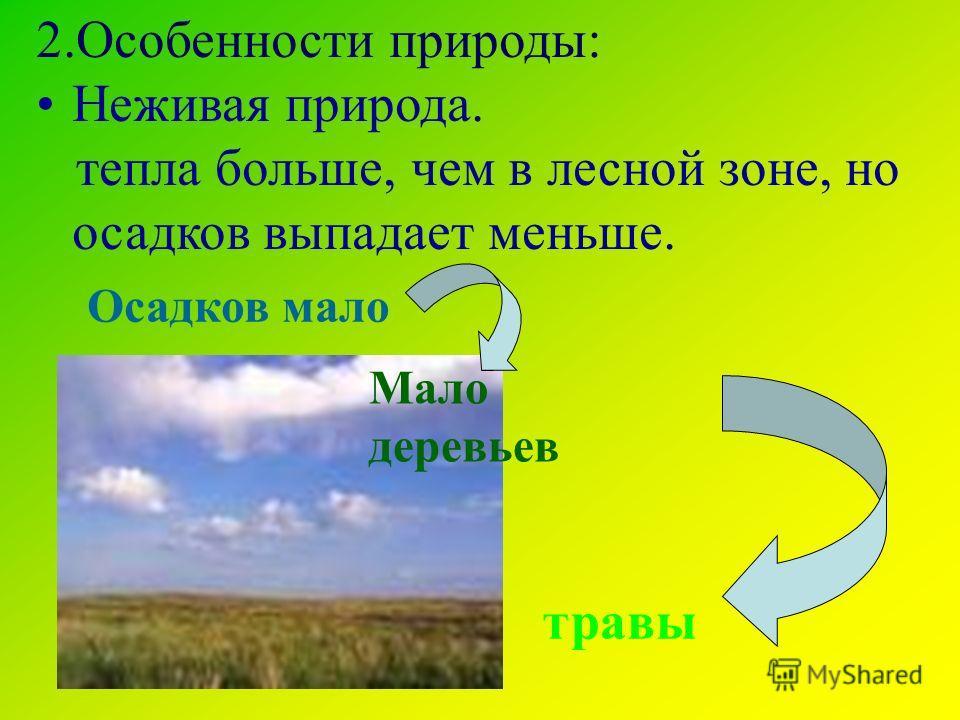 2. Особенности природы: Неживая природа. тепла больше, чем в лесной зоне, но осадков выпадает меньше. Осадков мало Мало деревьев травы