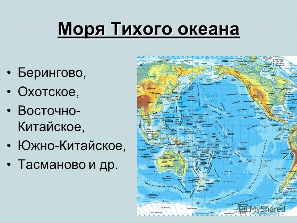 Моря Тихого океана Берингово, Охотское, Восточно- Китайское, Южно-Китайское, Тасманово и др.