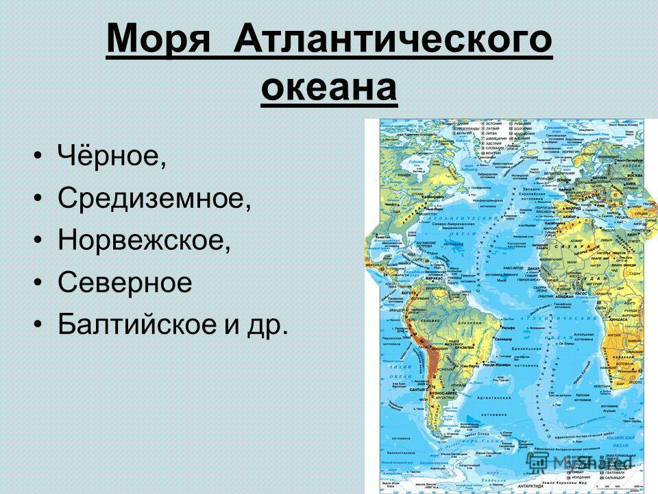 Моря Атлантического океана Чёрное, Средиземное, Норвежское, Северное Балтийское и др.