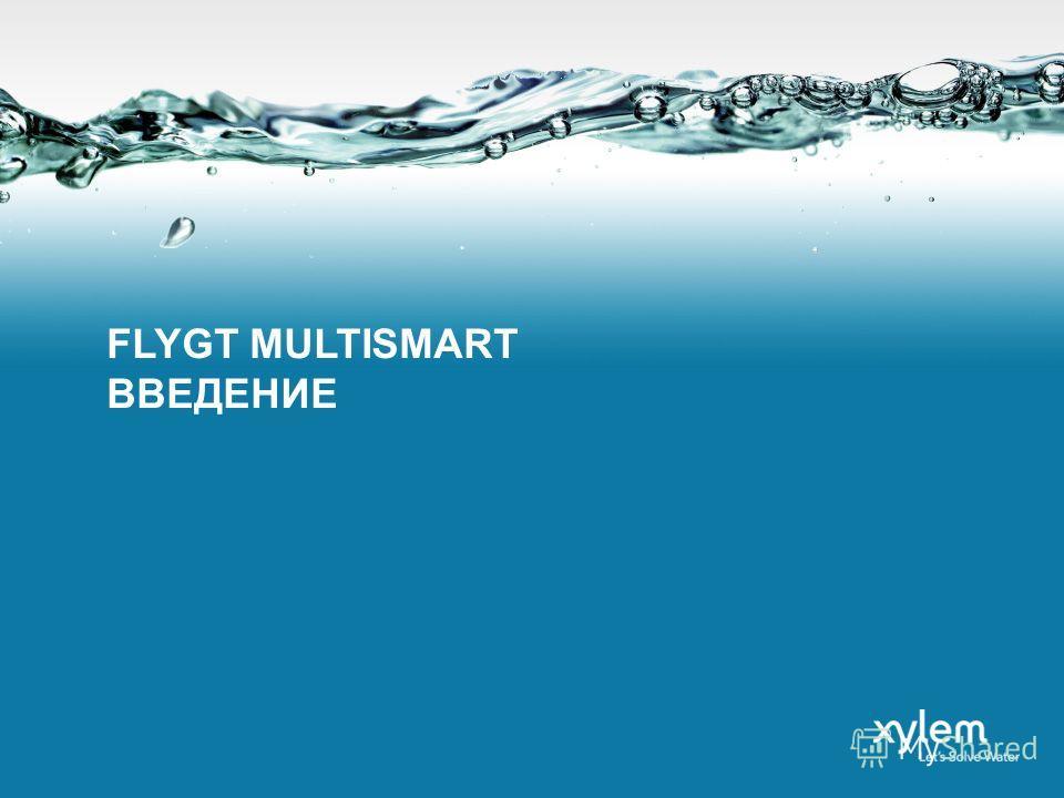 FLYGT MULTISMART ВВЕДЕНИЕ