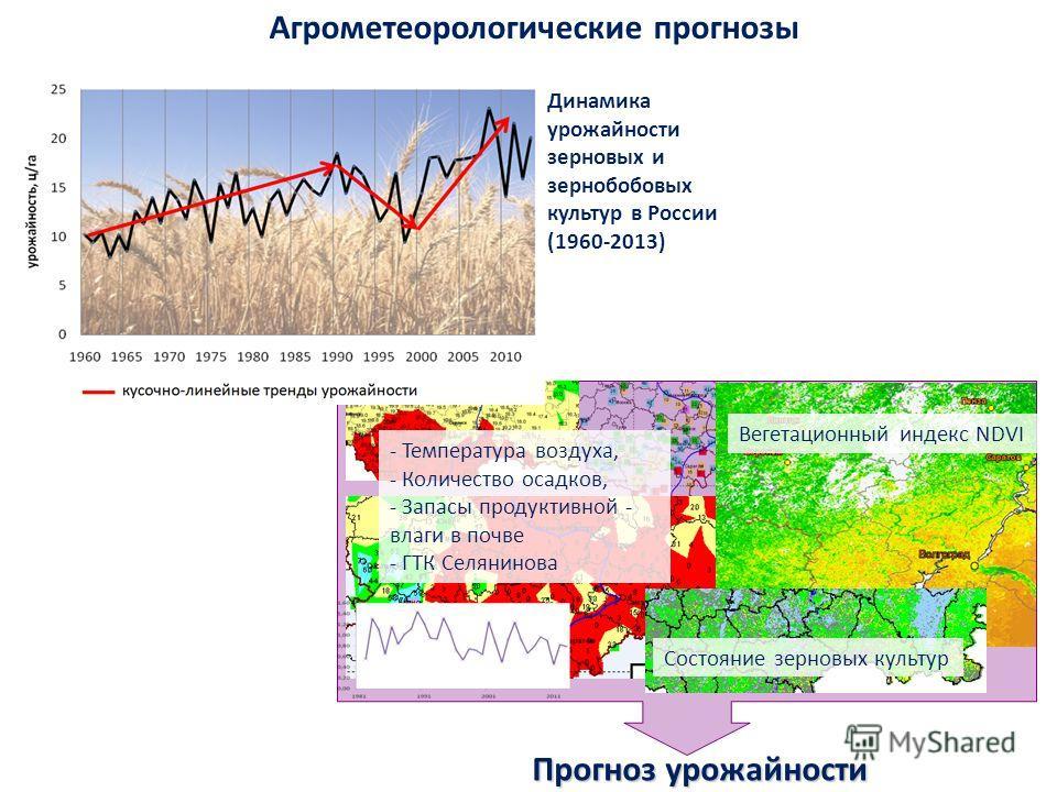Агрометеорологические прогнозы Вегетационный индекс NDVI Состояние зерновых культур Прогноз урожайности - Температура воздуха, - Количество осадков, - Запасы продуктивной - влаги в почве - ГТК Селянинова Динамика урожайности зерновых и зернобобовых к