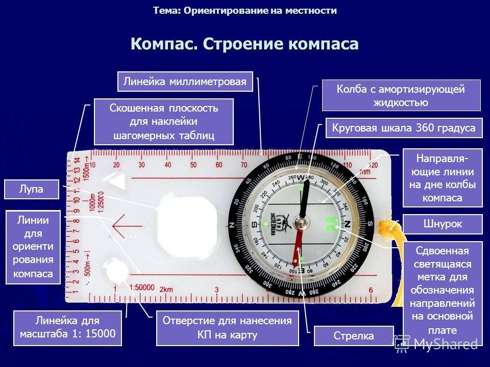 Компас. Строение компаса Колба с амортизирующей жидкостью Круговая шкала 360 градуса Направля- ющие линии на дне колбы компаса Шнурок Сдвоенная светящаяся метка для обозначения направлений на основной плате Стрелка Отверстие для нанесения КП на карту