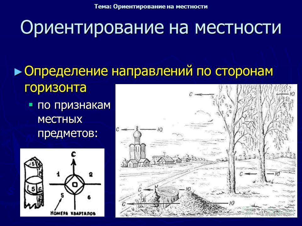 Ориентирование на местности Определение направлений по сторонам горизонта Определение направлений по сторонам горизонта по признакам местных предметов: по признакам местных предметов: Тема: Ориентирование на местности