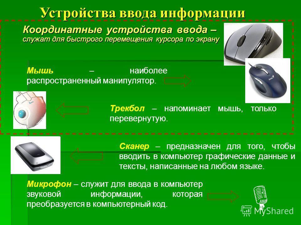 Координатные устройства ввода – служат для быстрого перемещения курсора по экрану Мышь – наиболее распространенный манипулятор. Трекбол – напоминает мышь, только перевернутую. Сканер – предназначен для того, чтобы вводить в компьютер графические данн