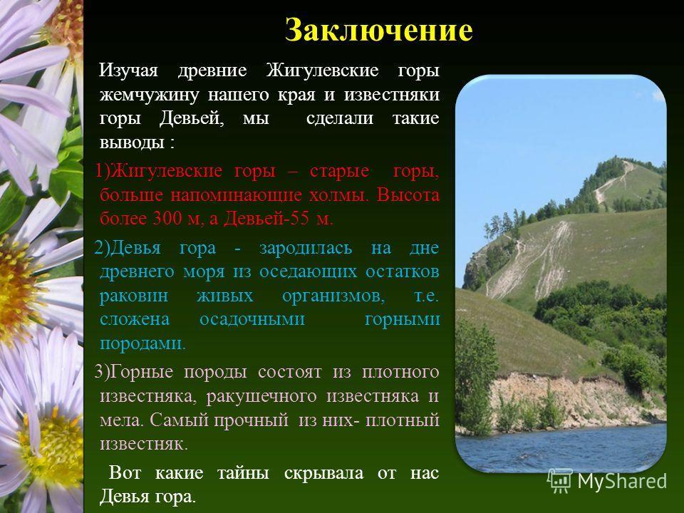 Заключение Изучая древние Жигулевские горы жемчужину нашего края и известняки горы Девьей, мы сделали такие выводы : 1)Жигулевские горы – старые горы, больше напоминающие холмы. Высота более 300 м, а Девьей-55 м. 2)Девья гора - зародилась на дне древ