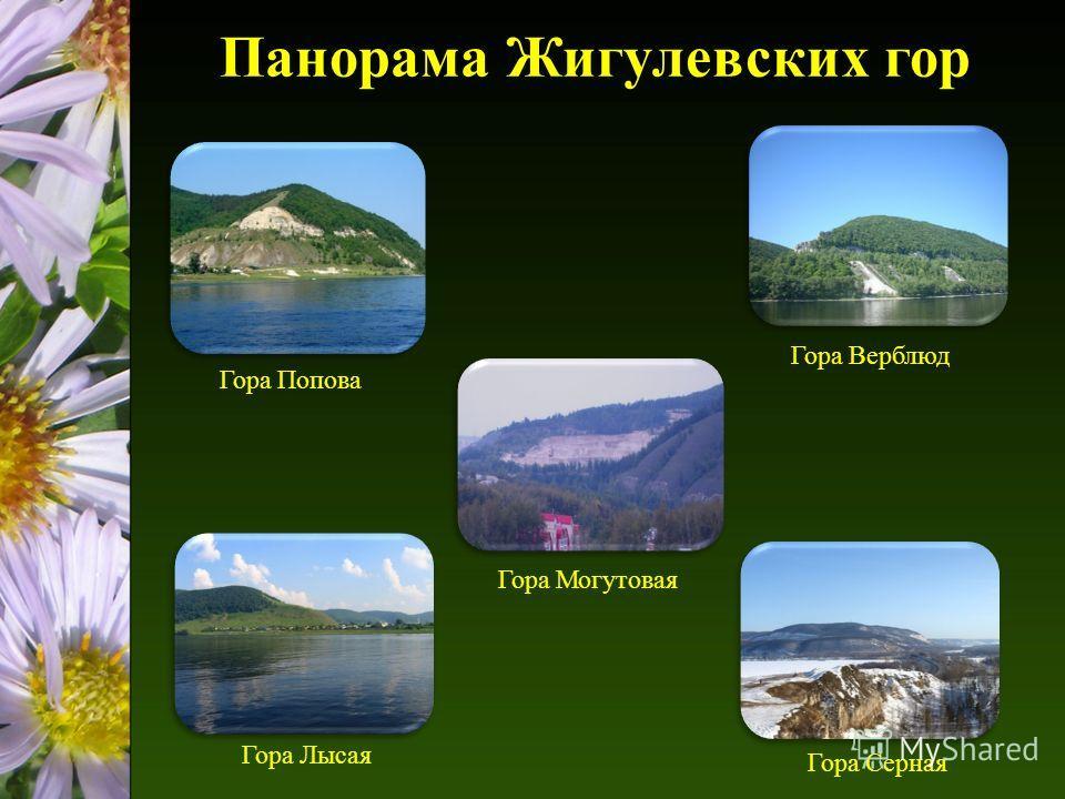 Панорама Жигулевских гор Гора Верблюд Гора Серная Гора Лысая Гора Попова Гора Могутовая