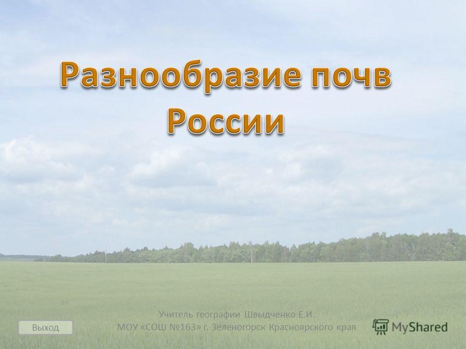 Учитель географии Швыдченко Е.И. МОУ «СОШ 163» г. Зеленогорск Красноярского края Выход