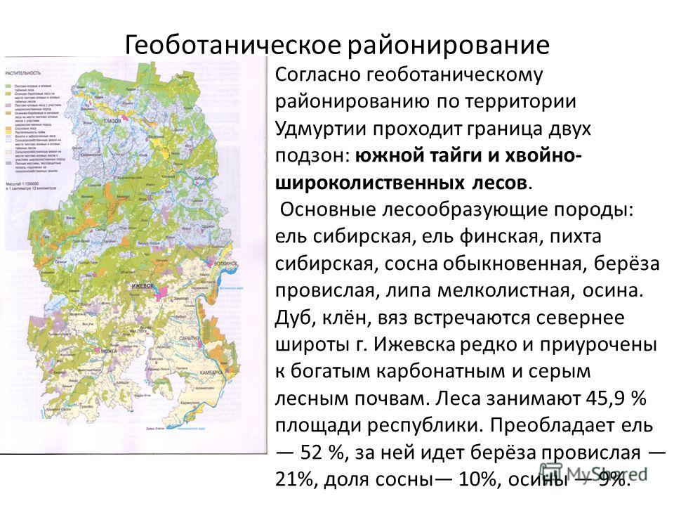 Геоботаническое районирование Согласно геоботаническому районированию по территории Удмуртии проходит граница двух подзон: южной тайги и хвойно- широколиственных лесов. Основные лесообразующие породы: ель сибирская, ель финская, пихта сибирская, сосн