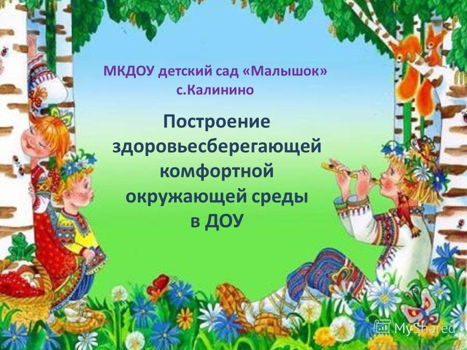 Построение здоровьесберегающей комфортной окружающей среды в ДОУ МКДОУ детский сад «Малышок» с.Калинино