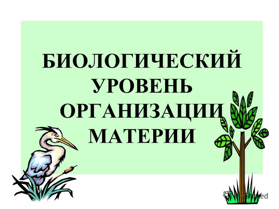БИОЛОГИЧЕСКИЙ УРОВЕНЬ ОРГАНИЗАЦИИ МАТЕРИИ
