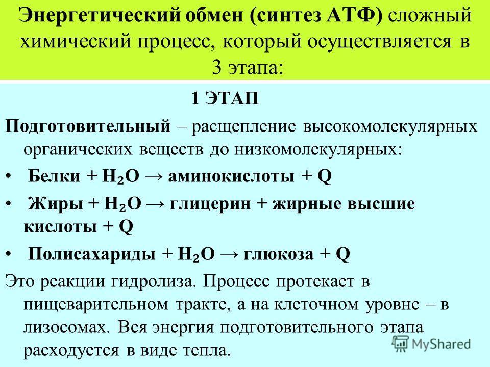 Энергетический обмен (синтез АТФ) сложный химический процесс, который осуществляется в 3 этапа: 1 ЭТАП Подготовительный – расщепление высокомолекулярных органических веществ до низкомолекулярных: Белки + Н О аминокислоты + Q Жиры + Н О глицерин + жир