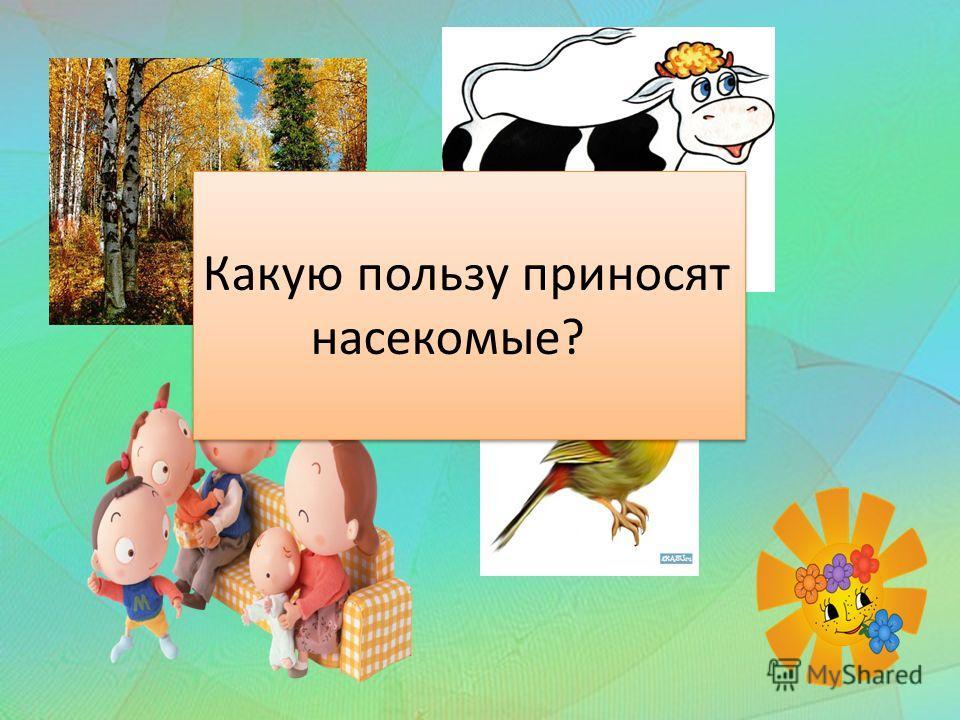 Какую пользу приносят насекомые? Какую пользу приносят насекомые?