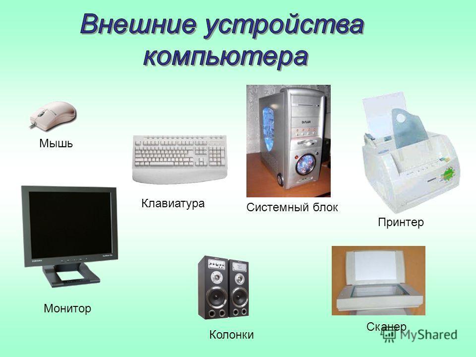 Сканер Принтер Клавиатура Колонки Мышь Монитор Системный блок