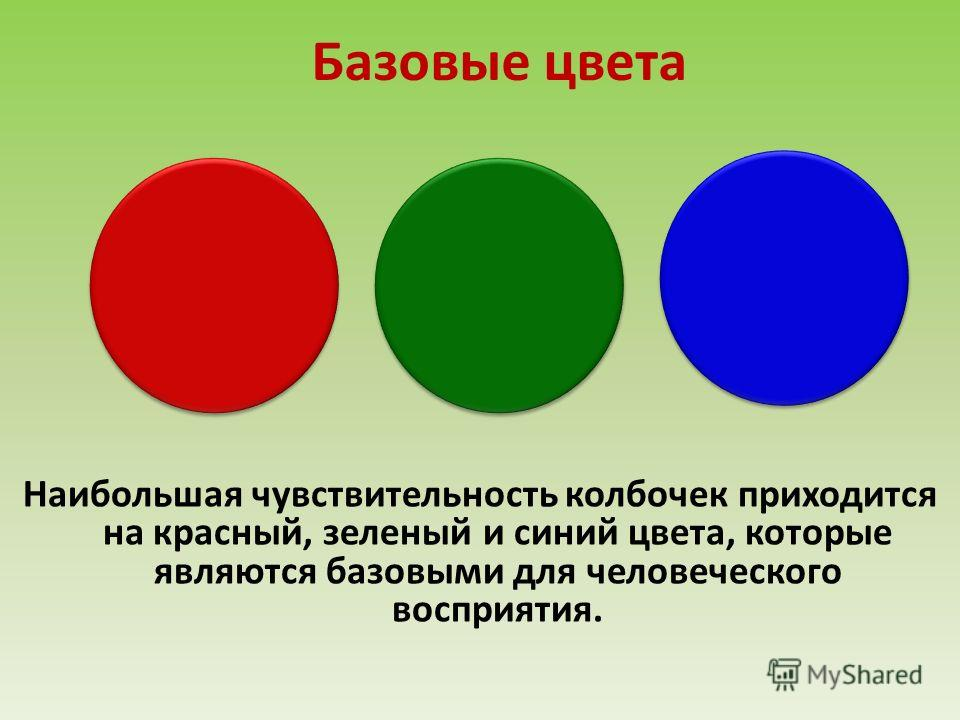 Базовые цвета Наибольшая чувствительность колбочек приходится на красный, зеленый и синий цвета, которые являются базовыми для человеческого восприятия.