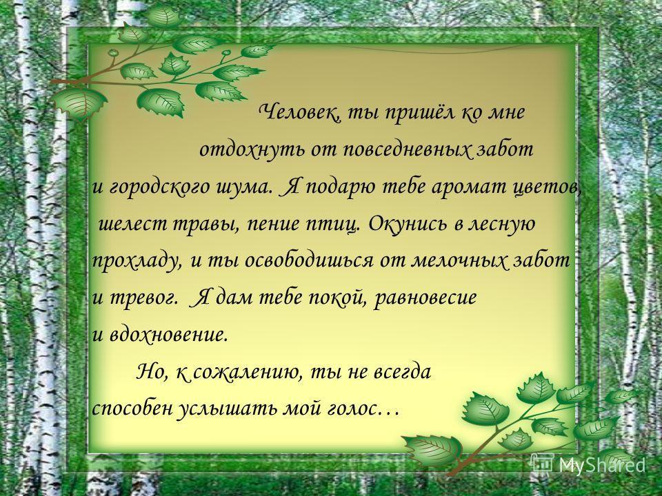 Человек, ты пришёл ко мне отдохнуть от повседневных забот и городского шума. Я подарю тебе аромат цветов, шелест травы, пение птиц. Окунись в лесную прохладу, и ты освободишься от мелочных забот и тревог. Я дам тебе покой, равновесие и вдохновение. Н