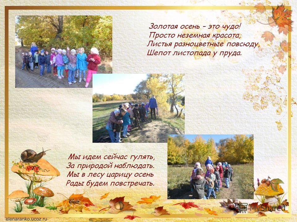 Мы идем сейчас гулять, За природой наблюдать. Мы в лесу царицу осень Рады будем повстречать. Золотая осень – это чудо! Просто неземная красота, Листья разноцветные повсюду, Шепот листопада у пруда.