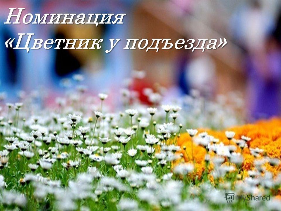 Номинация «Цветник у подъезда»