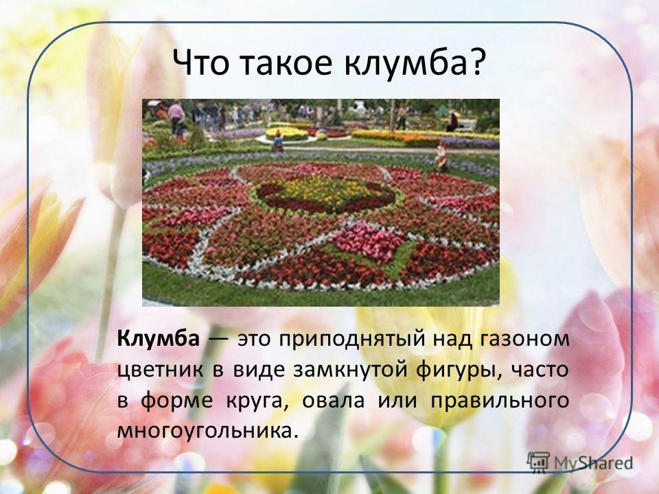 Что такое клумба? Клумба это приподнятый над газоном цветник в виде замкнутой фигуры, часто в форме круга, овала или правильного многоугольника.