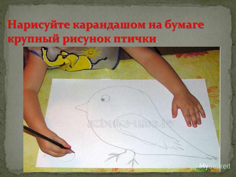 Нарисуйте карандашом на бумаге крупный рисунок птички Нарисуйте карандашом на бумаге крупный рисунок птички.
