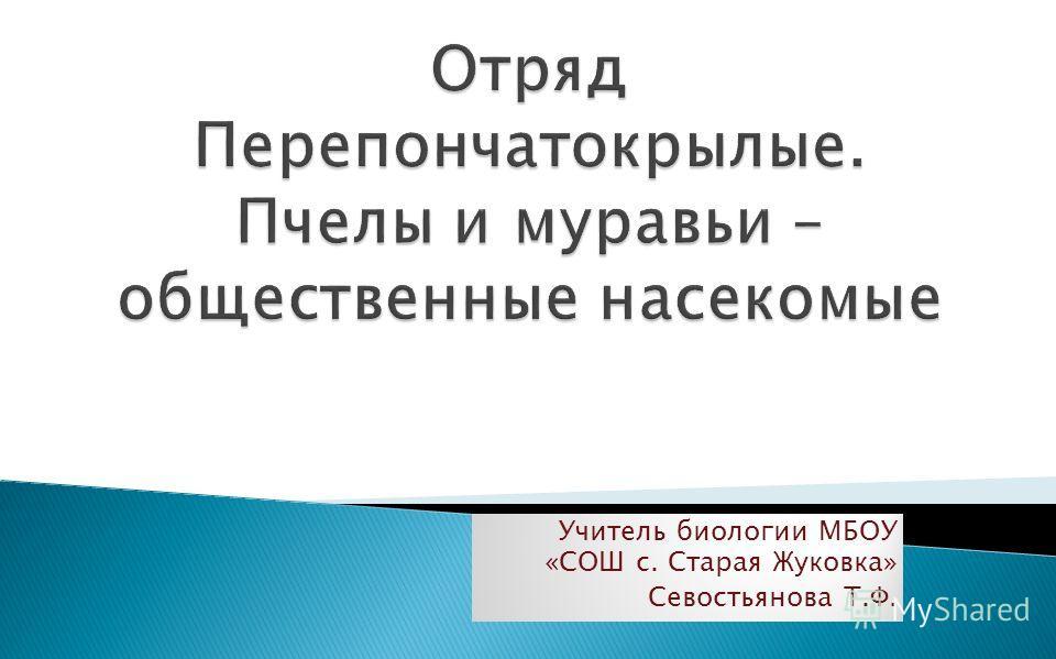Учитель биологии МБОУ «СОШ с. Старая Жуковка» Севостьянова Т.Ф.