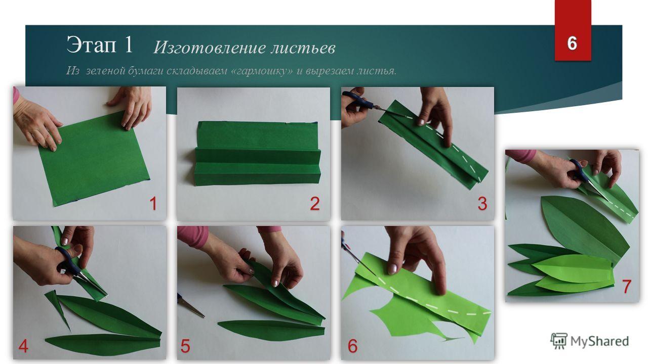 Этап 1 Изготовление листьев Из зеленой бумаги складываем «гармошку» и вырезаем листья. 123 456 7