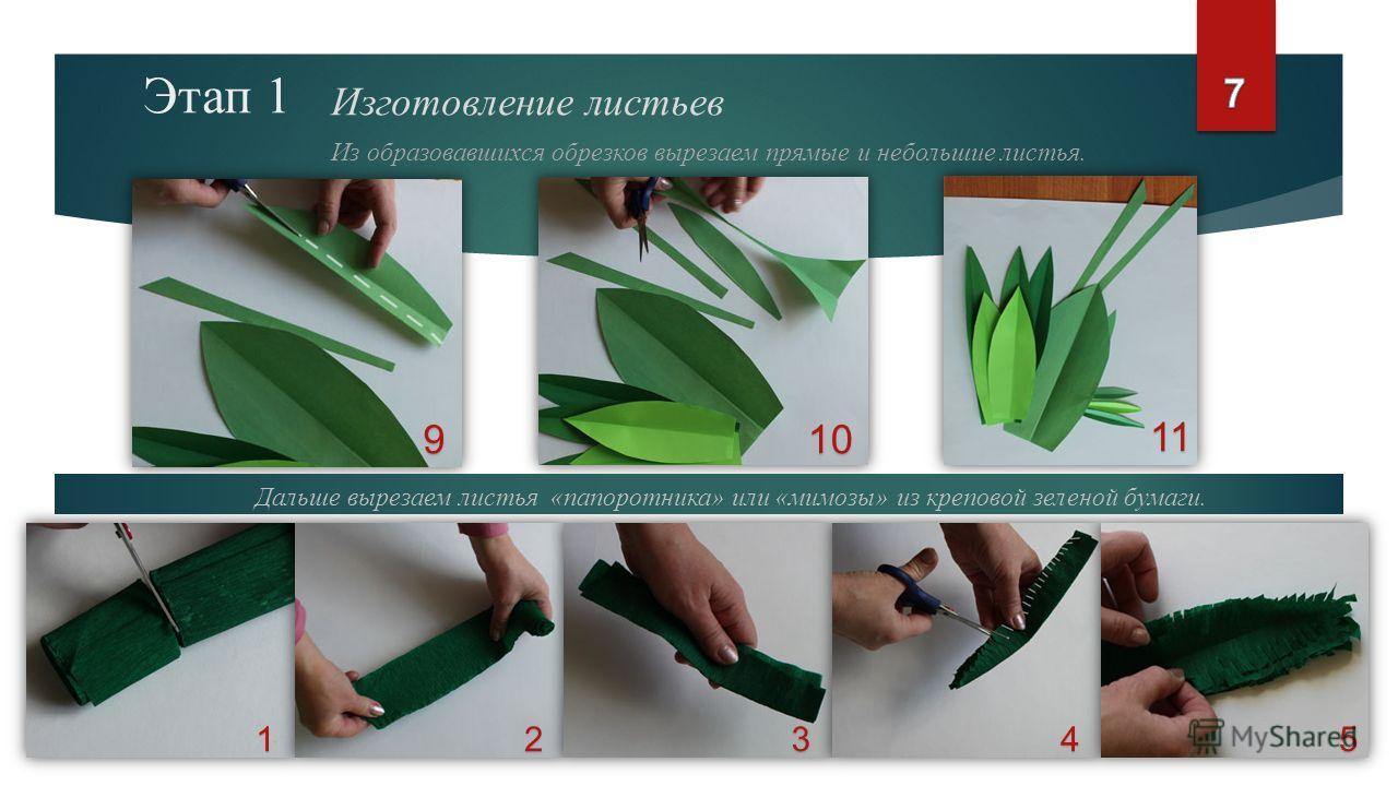 Этап 1 Изготовление листьев Из образовавшихся обрезков вырезаем прямые и небольшие листья. 910 1235 11 Дальше вырезаем листья «папоротника» или «мимозы» из креповой зеленой бумаги. 4