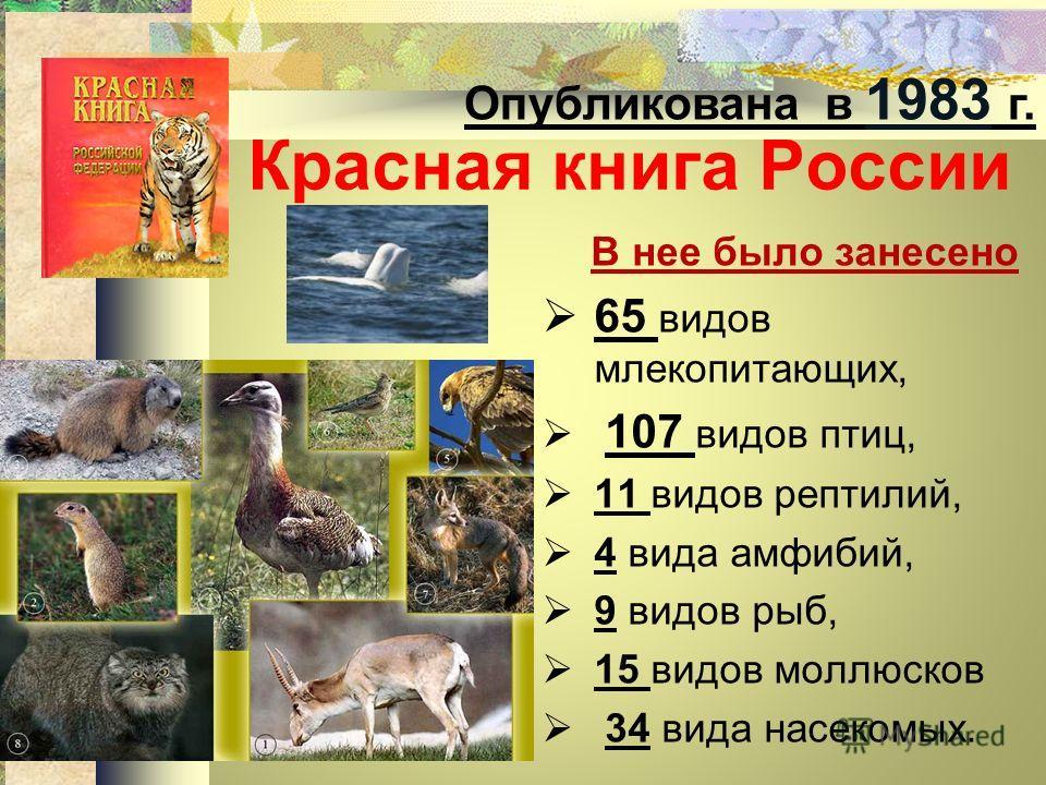 Презентация на тему Проект г класса По страницам Красной  7 Красная книга России