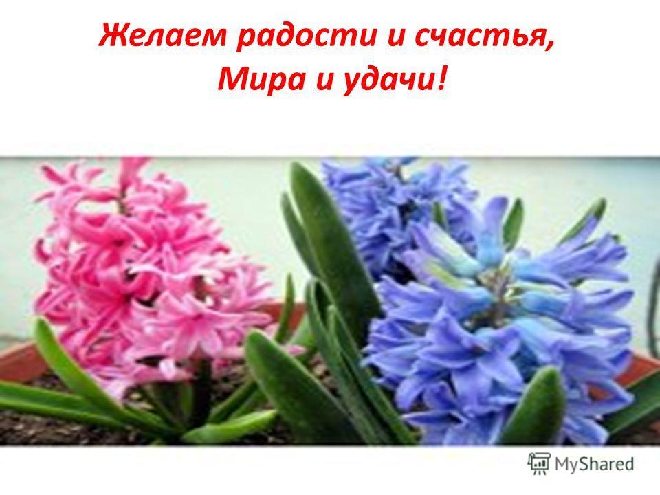 Желаем радости и счастья, Мира и удачи!