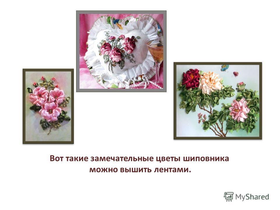 Вот такие замечательные цветы шиповника можно вышить лентами.