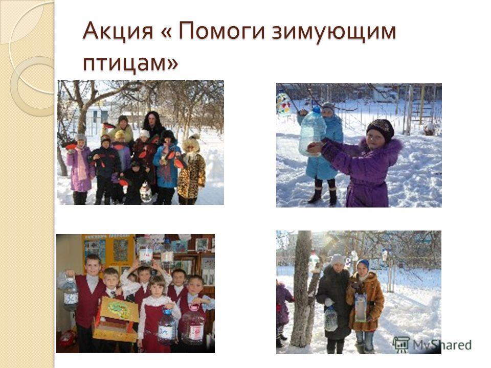 Акция « Помоги зимующим птицам »