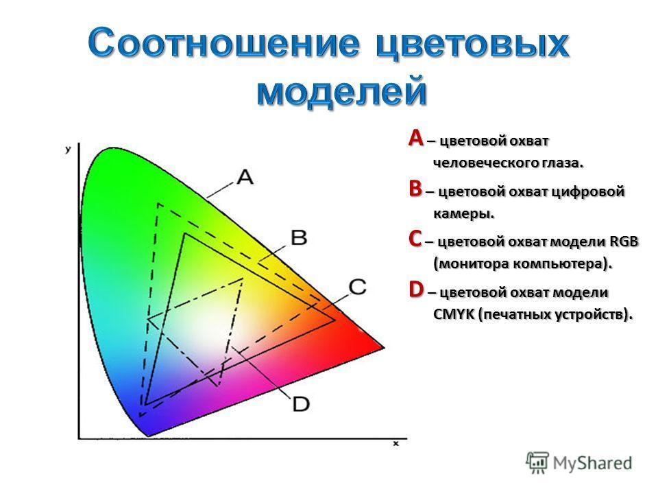 А – цветовой охват человеческого глаза. В – цветовой охват цифровой камеры. С – цветовой охват модели RGB (монитора компьютера). D – цветовой охват модели CMYK (печатных устройств).