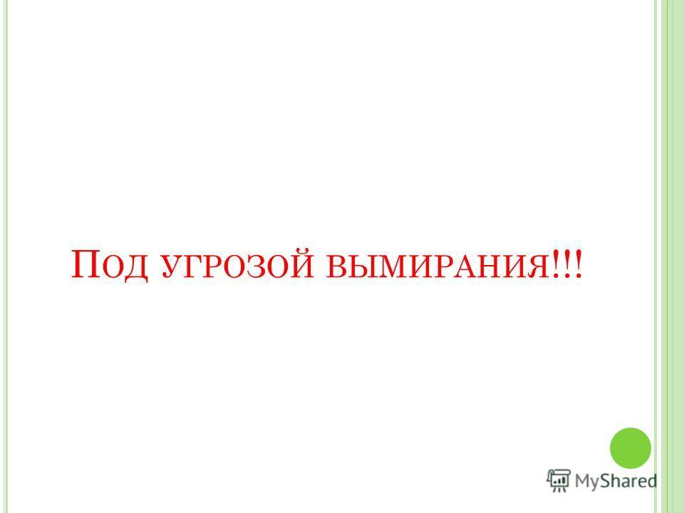 П ОД УГРОЗОЙ ВЫМИРАНИЯ !!!