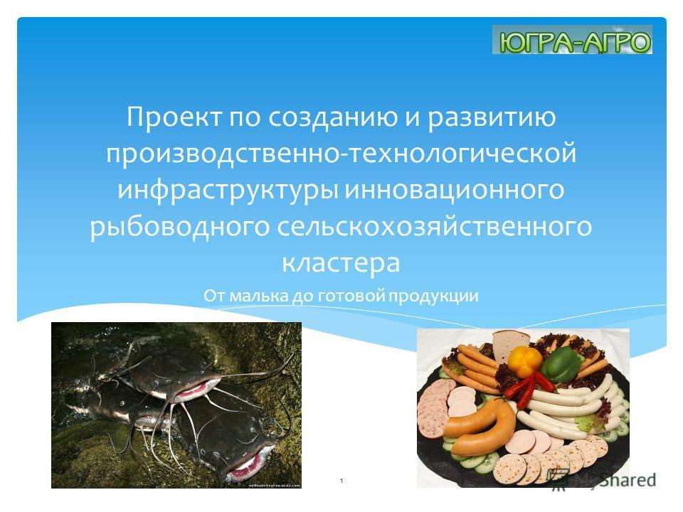 Проект по созданию и развитию производственно-технологической инфраструктуры инновационного рыбоводного сельскохозяйственного кластера От малька до готовой продукции 1