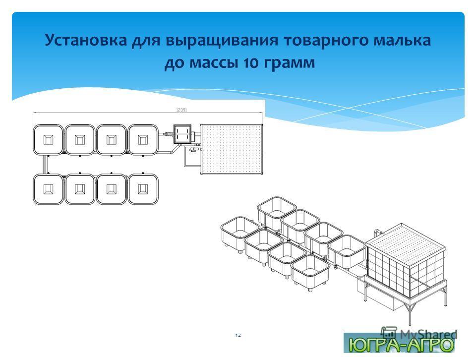 Установка для выращивания товарного малька до массы 10 грамм 12