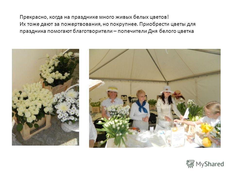 Прекрасно, когда на празднике много живых белых цветов! Их тоже дают за пожертвования, но покрупнее. Приобрести цветы для праздника помогают благотворители – попечители Дня белого цветка