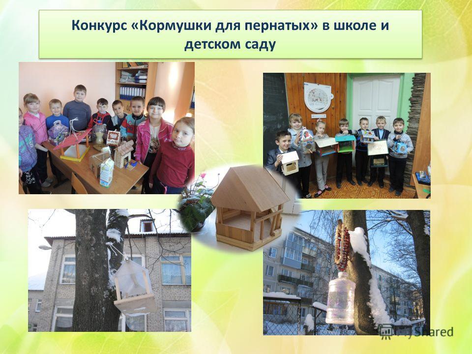 Конкурс «Кормушки для пернатых» в школе и детском саду