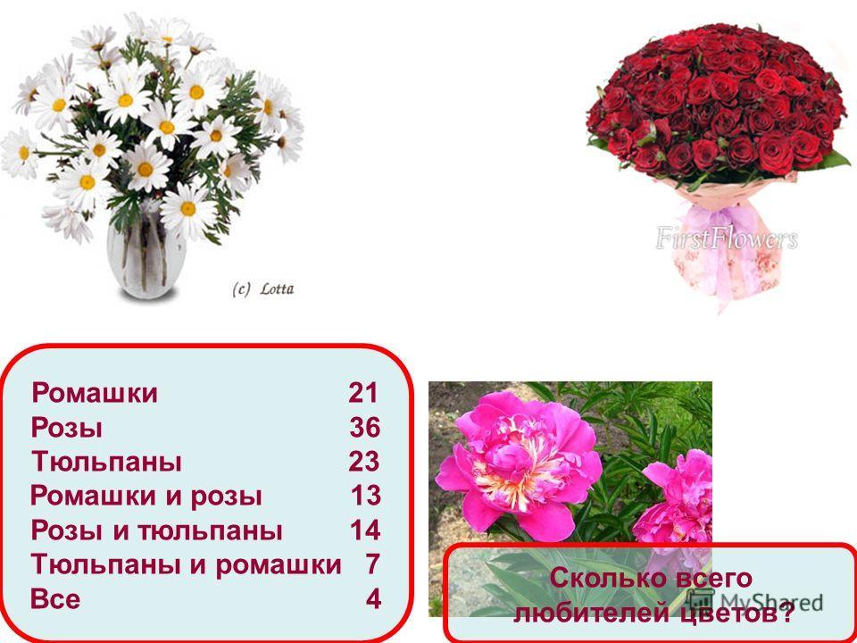 Ромашки 21 Розы 36 Тюльпаны 23 Ромашки и розы 13 Розы и тюльпаны 14 Тюльпаны и ромашки 7 Все 4 Сколько всего любителей цветов?
