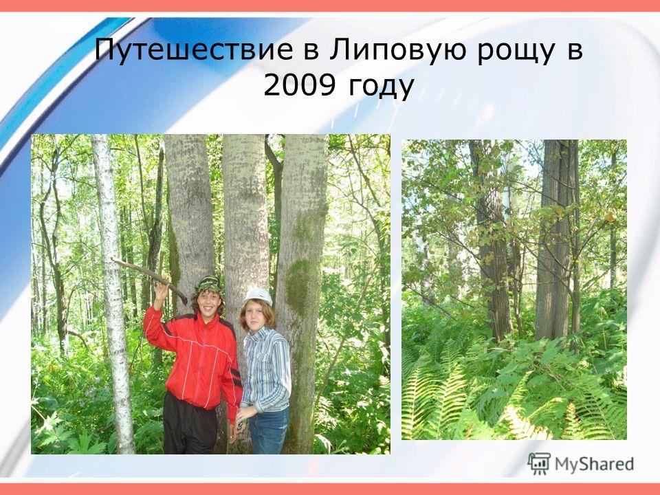 Путешествие в Липовую рощу в 2009 году
