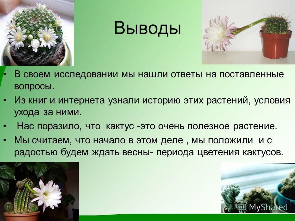 Выводы В своем исследовании мы нашли ответы на поставленные вопросы. Из книг и интернета узнали историю этих растений, условия ухода за ними. Нас поразило, что кактус -это очень полезное растение. Мы считаем, что начало в этом деле, мы положили и с р