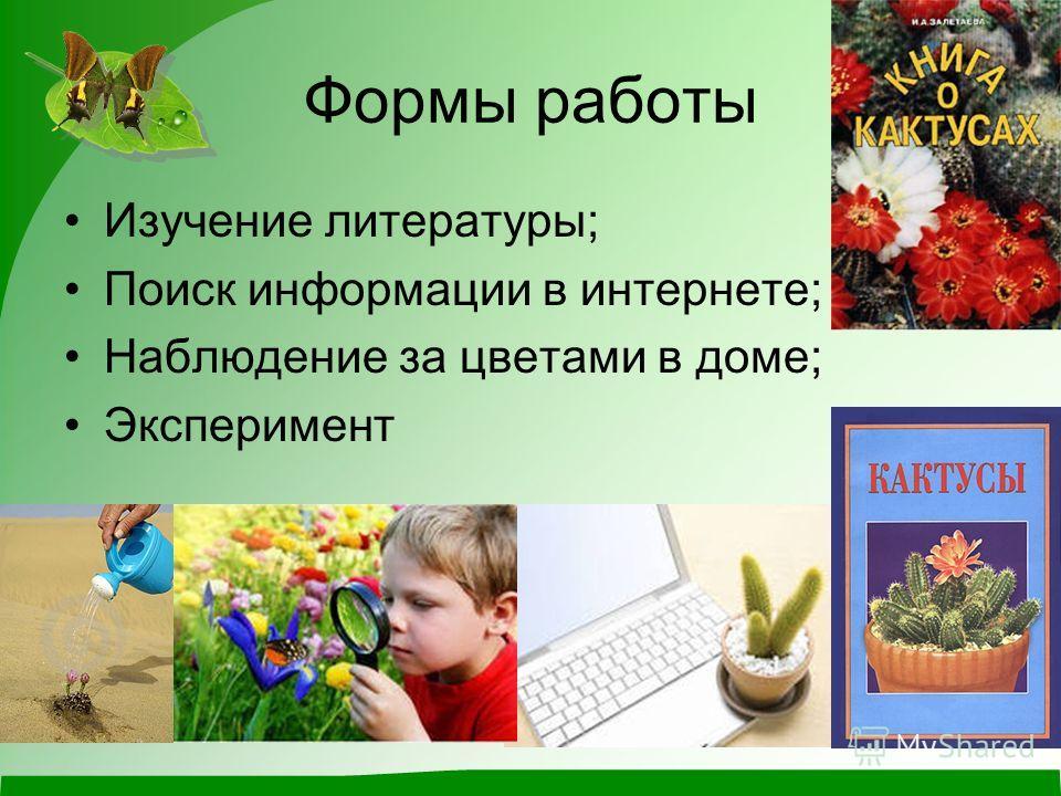 Формы работы Изучение литературы; Поиск информации в интернете; Наблюдение за цветами в доме; Эксперимент