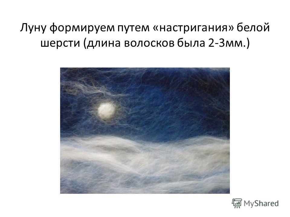 Луну формируем путем «настригания» белой шерсти (длина волосков была 2-3 мм.)